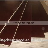brown film faced plywood,black film faced plywood phenolic glue,birch core plywood,wbp glue