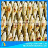 High quality frozen baked pond smelt
