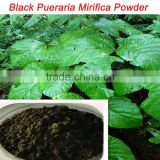 strong effect/100% Pure Herbal extract/Thailand black pueraria mirifica powder for largo penis enlargement