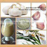 food / pharma/ feed grade pure garlic oil from garlic seed extract factory competitive price