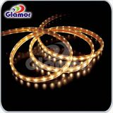Glamor LED strip smd 2835 two wire
