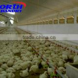 low cost structural steel fabrication poultry chicken house for broilers