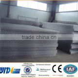 CE,TUV Certificated Iron welded galvanized fence/welded wire mesh 50x50