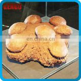 Indoor Playground Dinosaur Eggs Fossil eggs Model For Sale