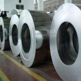 50 Ft Stainless Steel Coil 0.3mm-30mm Thickness