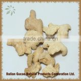 NEW Low pesticide residue Ginger root slices or Rhizoma Zingiberis Recens or fresh Ginger Root