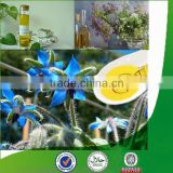 100% Natural & pure borage oil bulk with superior quality, factory supply borage seed oil
