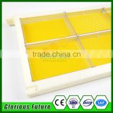 Beekeeping tools plastic Bee frame with comb honey cassette/container/honey comb storage box