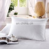 Quick rebound washable soft velvet feather pillow