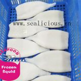 Top Quality Frozen Squid tube U5 U7 U10