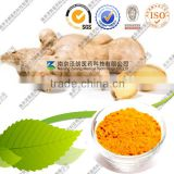 Manufacturer turmeric extract curcumin powder Bulk price