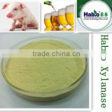 Habio Feed Grade Xylanase for Animal Feeding and Health