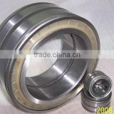 SL045006PP Double-Row Full Complement Cylindrical Roller Bearing SL045006 PP, SL 045006 PPNR, SL 04 5006 PP