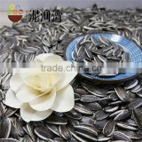 Best Quality Sunflower seeds market price