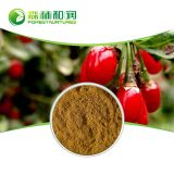 Factory Supply Goji Berry Wolfberry Extract Powder 10:1 With Competitive Price
