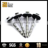 corrugated roofing nails/large head nail with washer/Galvanized umbrella head roofing Nails
