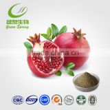 energy drink!Pomegranate Extract Made in China!Free sample!