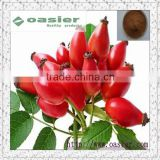 Natural GMP hot sale 5%VC Rosehip Extract