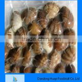 vacuum packed frozen short necked clam