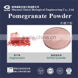 100% watersoluble bulk pomegranate juice powder