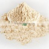 High Protein Wheat Flour