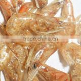 Pet Food AD Shrimp Fish Food