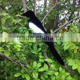 Full Body Flocked Magpie Decoy With Stake