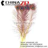 ZPDECOR Bulk Sale Crafts Cheapest Full Eye Dyed Yellow Peacock Feathers for Wedding Decoration
