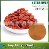 Factory 100% Natural Goji Berry Extract Powder,Goji Berry Extract