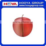 Promotion fruit apple shape promotion sticky note