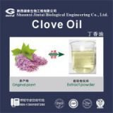 85%  indonesia eugenol liquid clove oil