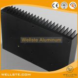 Black Anodized Aluminum Heat Sink for Power Conversion