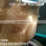 Olive cold press oil machine price in pakistan