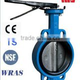 GG25 Wafer Butterfly Valve Center Line EPDM Lined Valve DN40-DN300