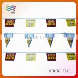 Colorful Outdoor String Bunting Flag