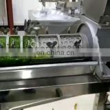 0.5-1.5T/H industrial fruit juicer citrus juicer for fruit juice processing
