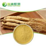 Organic Ginseng Root Extract Powder Panax Ginseng Ginsenoside Factory Price