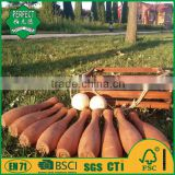 wooden bowling game , wooden bowling,lawn bowling game                                                                         Quality Choice