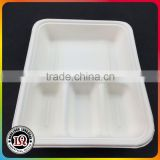 Sugar Cane Bagasse Food Container