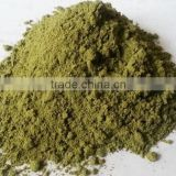 nutritional supplements dried moringa leaves powder for good health /pharmacy useful