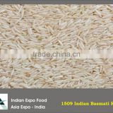 Indian Basmati Rice in bulk best price and good quality