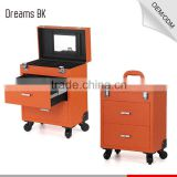 Guangdong Manufacturer customerized makeup beauty trolley carring case lighted mirror cosmetic for makeup artist