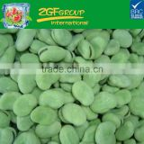 IQF frozen green broad beans