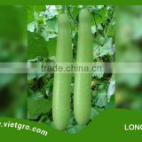 High Yield F1 Hybrid Bottle Gourd Seed - LONG 100