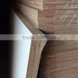 Good quality Commercial hemp plywood Low Price                                                                         Quality Choice