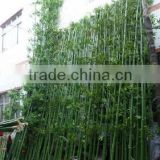 Best quality house plant bamboo tree/artificial bamboo leaf/artificial bamboo plant                                                                         Quality Choice