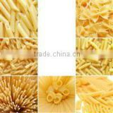 Automatic Macaroni Pasta/ Itlian Pasta/ Spaghetti Pasta Food Production Line +86-0531-15964515336