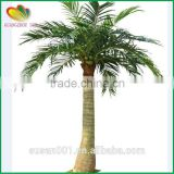 wholesale fake plant artificial coconut palm tree decor                                                                                                         Supplier's Choice