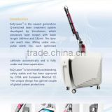 800mj Nd Yag Lazer Opt Beauty Machine Naevus Of Ito Removal Sapphire + Ruby Q Switches Laser
