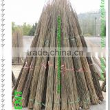 ZENT-136 Nature Dry Round Straight Small E-co-friendly Bamboo Poles /Rods/Sticks Wholesale